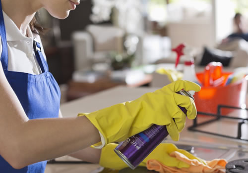 Nettoyage de l'habitation par une aide-ménagère à Waterloo